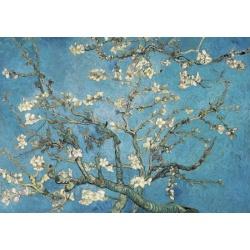 Almond Blossom, 1890 - Vincent van Gogh wentworth 40st