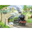 Train Spotting, Hop Puzzels 250st XL stukken