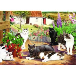 "House of Puzzles. BIG 500stukjes Cool Cats  ""The BramptonCollection """