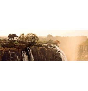 Elephant, Heye Puzzel 1000stukjes