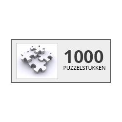 1000stukjes Castorland - Puzzel & Spel